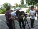 b_150_100_14673652_00_images_Berufsfachschule_Film3.jpg